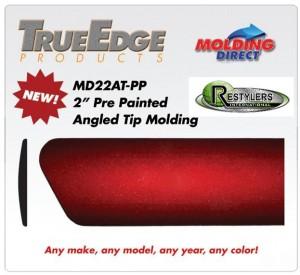 RC Molding Flyer